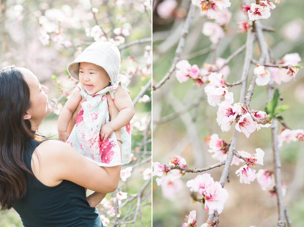 babys1styear_cherryblossoms001